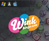 Wink Bingo Strengths and Features